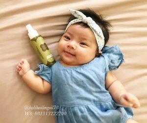 minyak kutus kutus untuk bayi